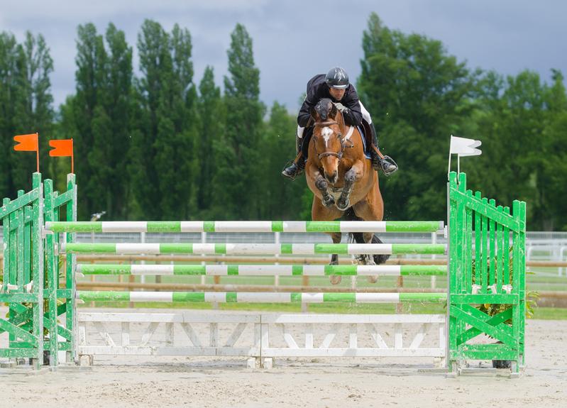 Palmar s du grand prix au jumping de maisons laffitte 2015 - Concours maison laffitte ...